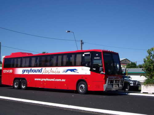 greyhound-bus-bruce-highway