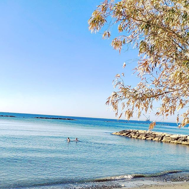 Early morning swim #limassol #cyprus #sea #travel #travelling #toptags #visiting #traveler #instatravel #instago #wanderlust #trip #photooftheday #lifeofadventure #doyoutravel #tourist #instapassport #instatraveling #mytravelgram #travelgram #travelingram #igtravel #instalife #ig_worldphoto #travelstoke #traveling #travelblog #instago