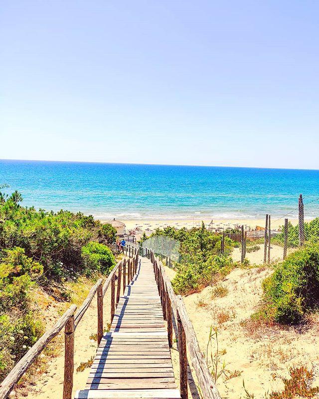 My daily paradise#sabaudia #igerslatina #chillout ••• #sea #beach  #sand #water #naturelovers #seascape #beautiful  #natureza #vitaminsea #seaview #refelctions #summervibes #seaside #riverside #ocean #amazing #nature #ripples #water_shots #waterfall #bluesea #sealovers