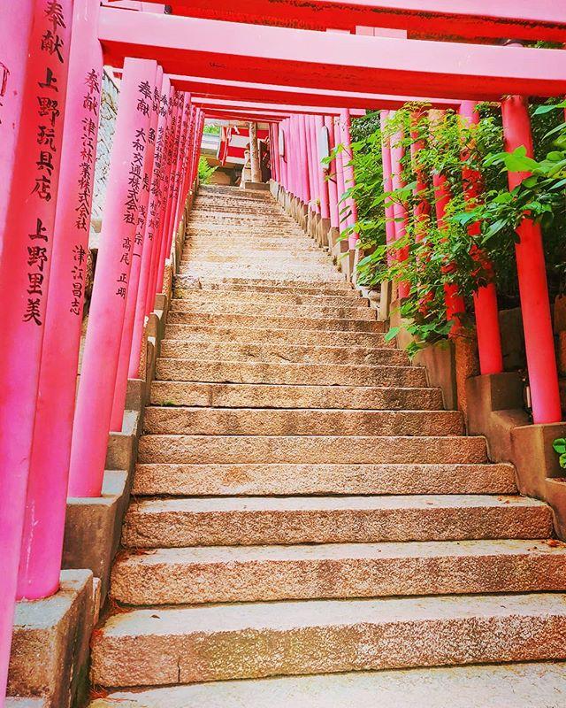 The stairs to the temple ⛩️•••#shimonoseki #temple #japan #maidirebanzai  #travel #travelling #traveler #instatravel #wanderlust #trip #lifeofadventure #doyoutravel #instapassport #instatraveling #mytravelgram #travelgram #travelingram #travelstoke #traveling #travelblog #instago