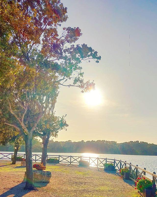 Feeling the good vibes 🤙 #traveling #travels #traveller #sunset_madness #travelblogger #traveler #travelgram #sunset #travelling #travelawesome #travelingram #tree_magic #traveltheworld #lake #sunset_pics #travel #instatravel #sunset #sunsets #travelphotography #sabaudia #tree