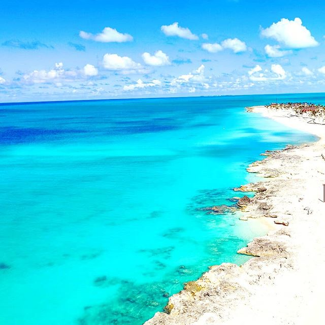 The Infinity blue of Ocean Cay  #oceancay #msccruises #mscmarinereserve #sea #traveler #instatravel #traveladdict #beachlife #bahamas  #travelawesome #travelblog #travelphotography #beach #travel #travelingram #travelgram #travelblogger #travels #bahamas🇧🇸 #traveling #traveltheworld #islands #travelling