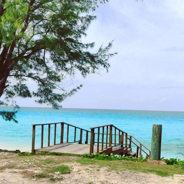 #bimini #bahamas #travellife #travelawesome #beachtime #travelblog #travels #travelingram #traveladdict #travelphotography #travelphoto #traveling #beach #travelblogger #travelgram  #travel #travelling #sea #beachlife #seaside #traveller #beaches #beachday #travelstoke #beachvibes #traveldiaries #seaview #sealife