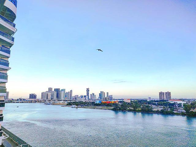 Good Morning Miami!  🤙 #miami #florida #travellife #travel #travelphotography #travelling #travels #travelpics #traveller #sunrise #travelingram #crew #crewlife #sailing #travelphoto #travelawesome #travelstoke #travelgram #traveltheworld #miami #traveling #cruiseship #traveladdict #travelholic #traveler #travelblog #miamilife #cruise #cruiselife