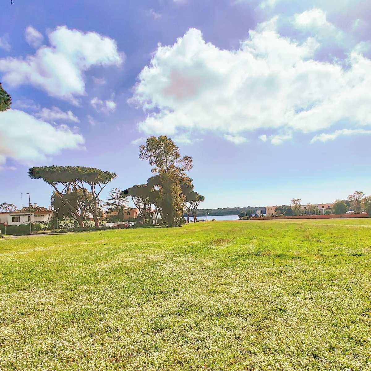 Spring vibes #sabaudia #italy #Italia #verde #natura #clouds #grass #nature #travel #naturegram #traveler #naturephotography #naturelover #travelphotography #traveltheworld #travelgram #traveller #travelling #traveling #naturelovers #natureza #green