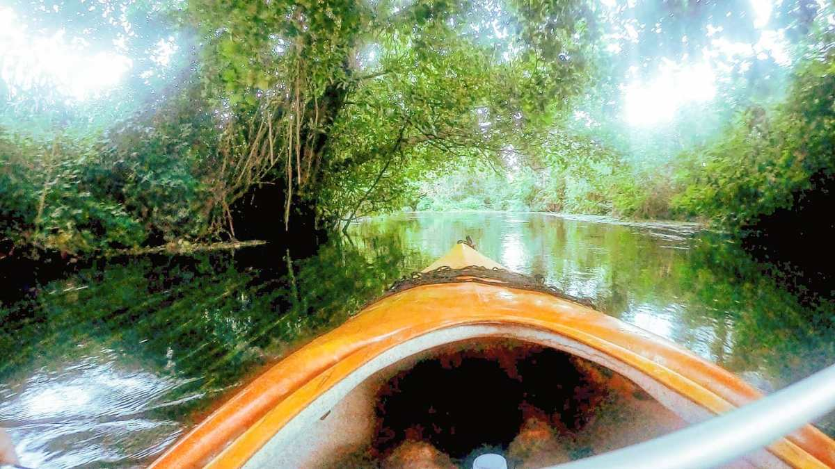 Kayaking into the nature 🛶🤙#sermoneta #fiumecavata #travelingram #nature #travel #fiume #natura #gopro #traveltheworld #traveler #traveller #travelblog #river #green #travelling #naturephotography #traveling #riverside #travelphotography #travelgram #naturelover #naturelovers #kayak