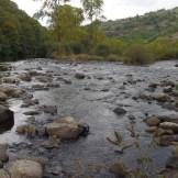 Radier inventorié - habitat favorable aux juvéniles de saumon