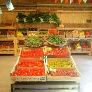 Vente Potager d'antan CHECY