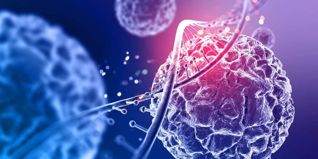 03 de setembro – dia do biólogo: formação necessária e áreas de atuação