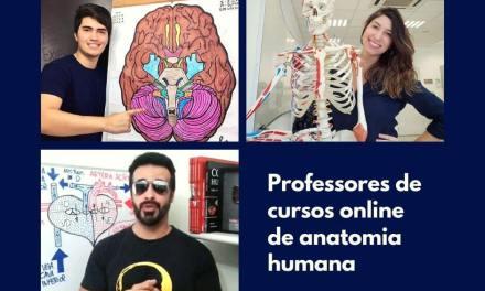 Curso online de anatomia: 3 professores que você precisa conhecer