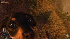 Far Cry® 6_20211004141943