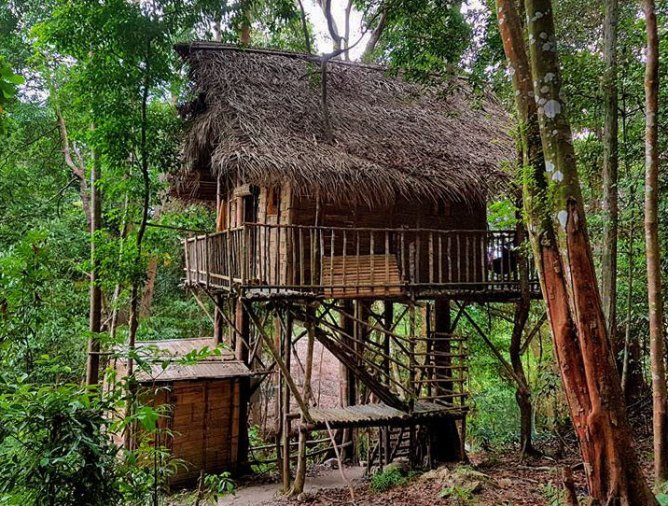 Rainforest Tree House - Find your uniquely local staycation at LokaLocal