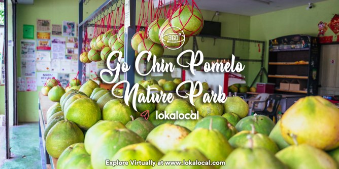 Ultimate Virtual Tours in Malaysia - Go Chin Pomelo - www.lokalocal.com