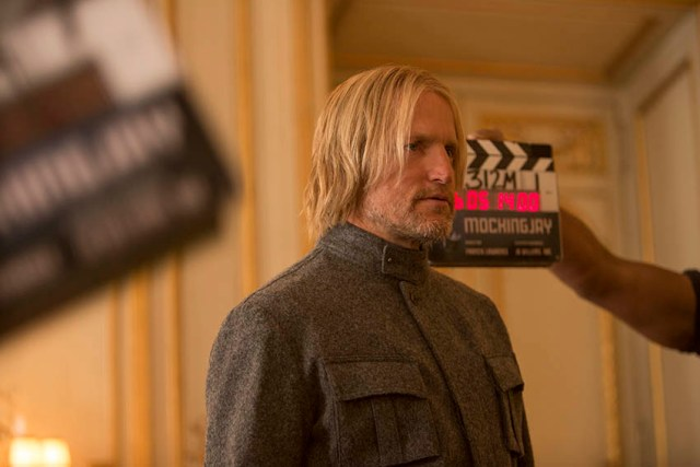 Haymitch Abernathy (Woody Harrelson)