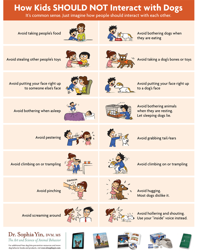 How Kids SHOULD NOT Interact With Dogs - Lola The Pitty 'My Dog Bit My Child' - poster via Dr. Sophia Yin