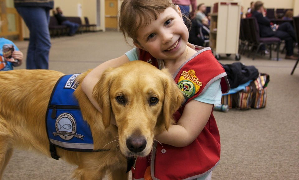 Comfort Dog Ministry - Lord of Life