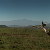 View from Lolldaiga Hills Ranch of Mount Kenya to the southeast.