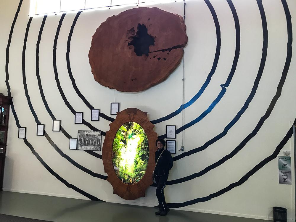 Musée du Kauri