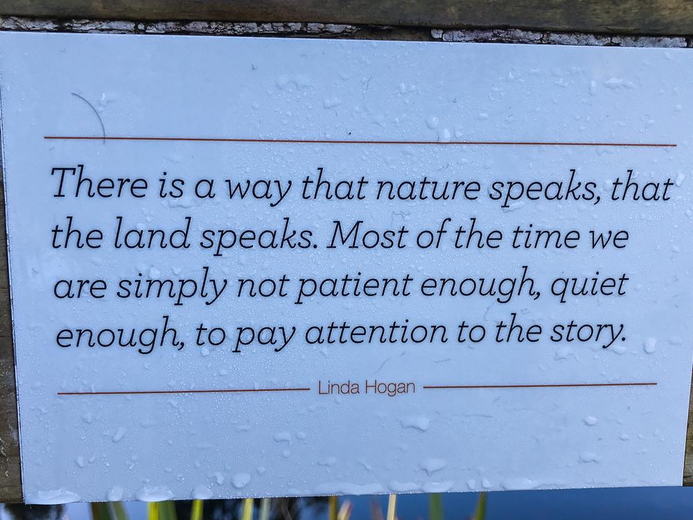 La nature et l'homme