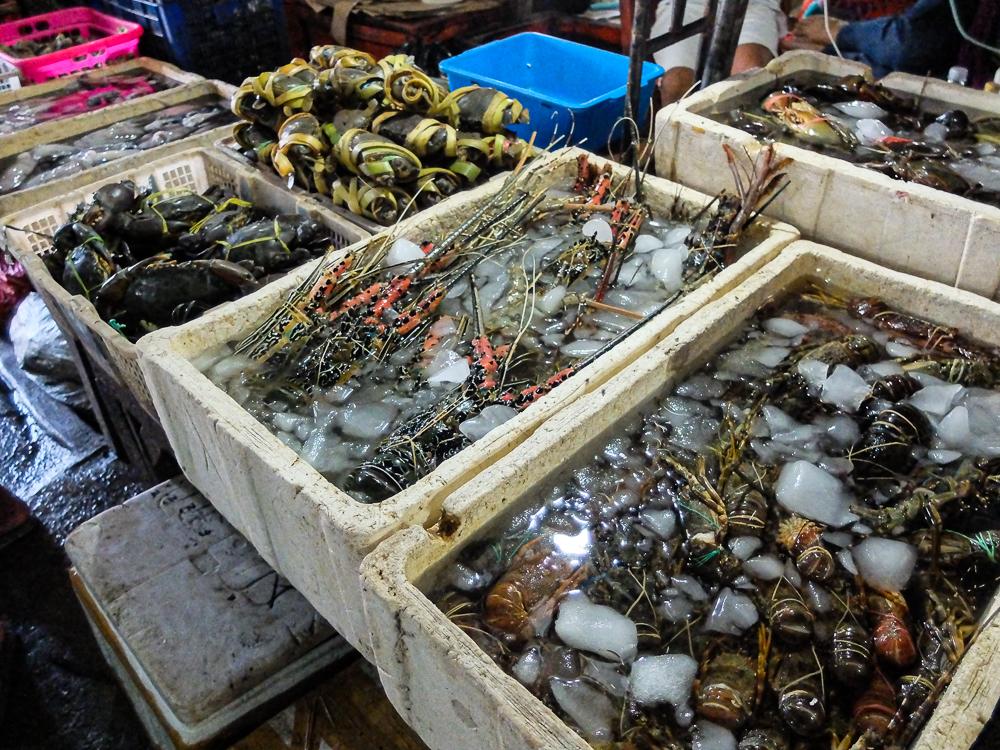 Crabes, homards, gambas...miam !