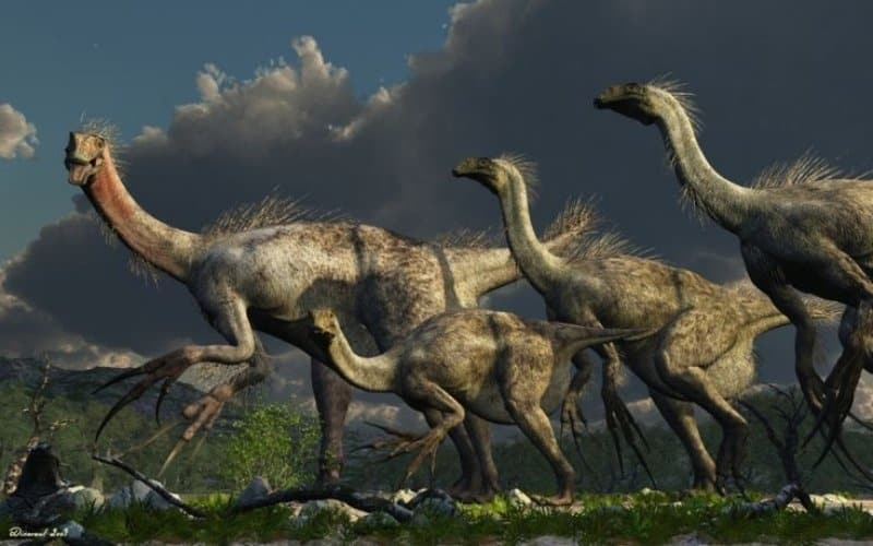 10 Prehistoric Creatures That Are Beyond Unusual
