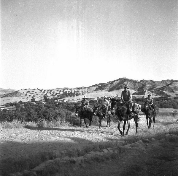 Melissa Crotone  Contadini su asini e muli in una strada di campagna Treccani Ernesto