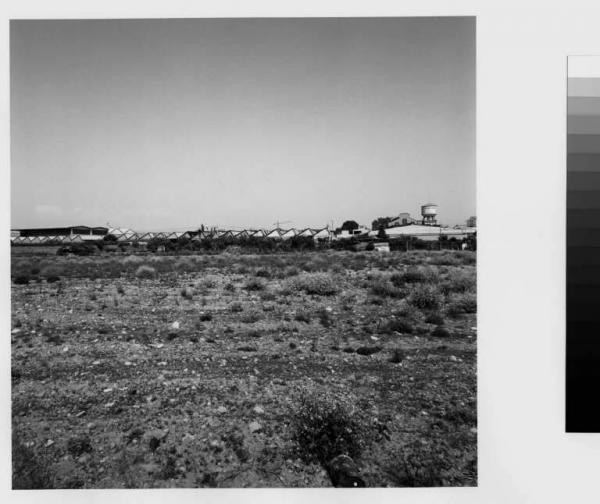 Cormano  campo incolto  capannoni  zona industriale Rosselli Paolo  Fotografie  Lombardia Beni Culturali