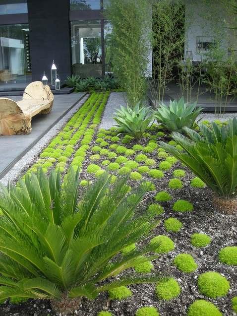 simple private garden  httplometscom