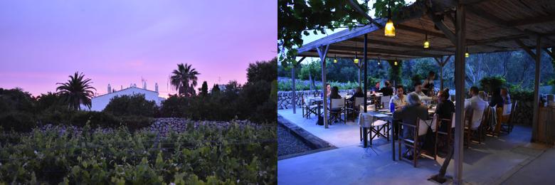 Menorca bars, Winery Binifadet