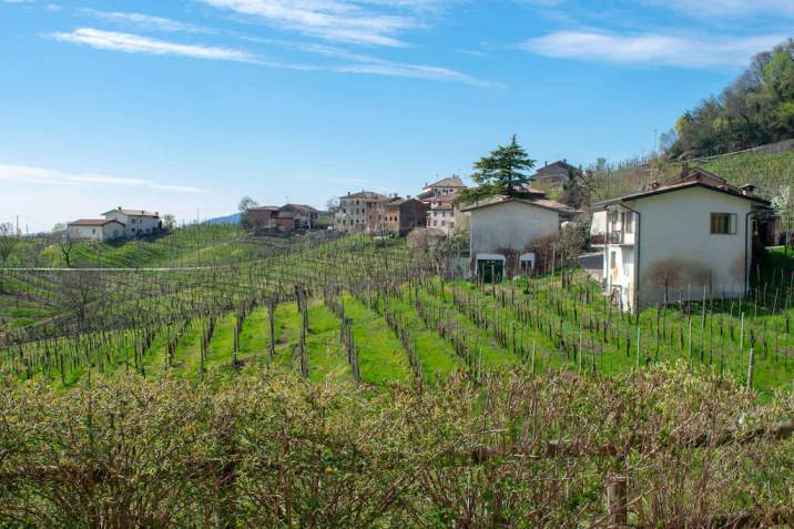 Visit the Prosecco region of Italy