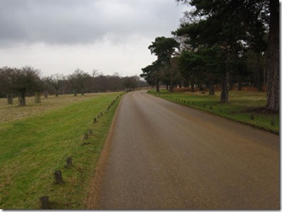 Cycling-around-Richmond-Park