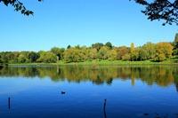 hampsted-heath-lake