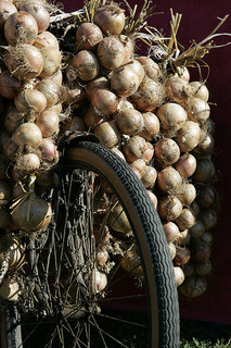 The Pink Onions of Roscoff