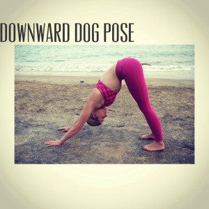 twc downward dog