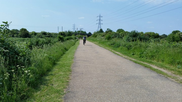 Cycling across Walthamstow Marshes