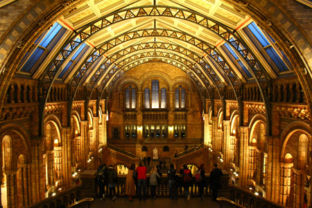 Natural History Museum Central Hall