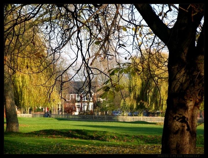 Guitar Tuition-Queens Park, Kensal Rise, Kilburn
