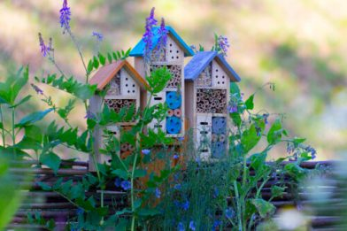 pollinator houses for beneficial insects to help us do our gardening with fewer chemicals