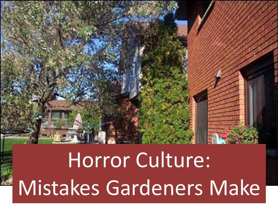 How To Avoid Horror Culture Mistakes Gardeners Make
