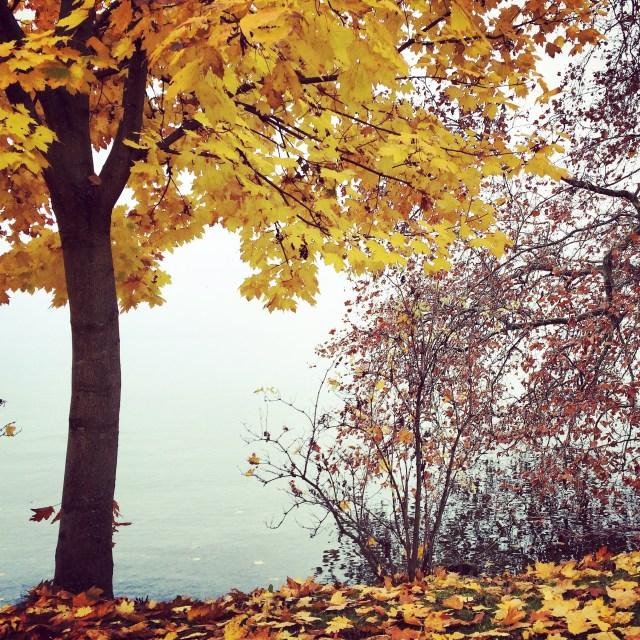Switzerland_autumn_lake