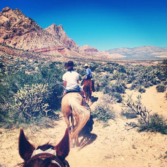 vegas_weekend_horse