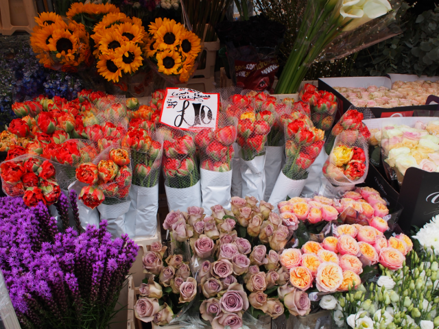 columbia_road_flower_market__0001_Layer-19