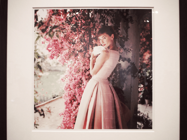 NPG_Audrey-Hepburn_Portraits-of-an-icon_05