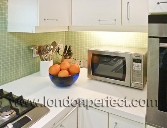 1 Bedroom London Apartment Vacation Rental