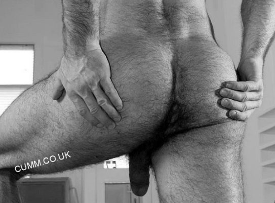 cropped-Gay-Men-Have-Lower-Rates-of-Prostate-Cancer-arse-bdad-hairy-cheeks-spread.jpg