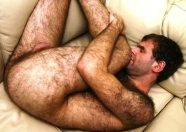 hairy-arse-art-ladz