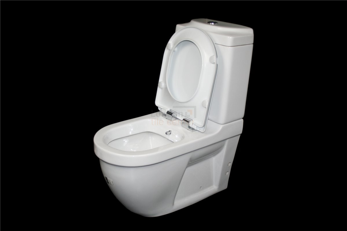 DARIA ALL IN ONE COMBINED BIDET TOILET WITH SOFT CLOSE SEAT