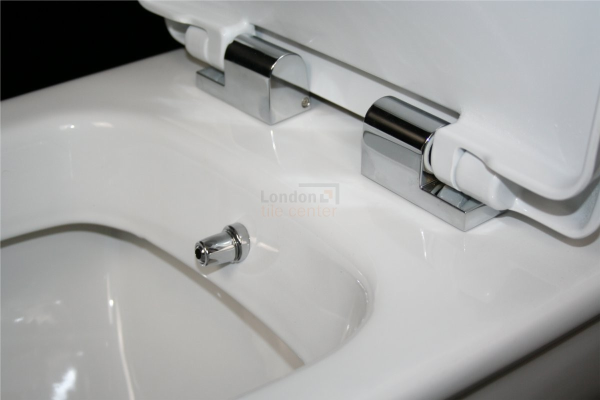 VALERIA BACK TO WALL ALL IN ONE COMBINED BIDET TOILET WITH