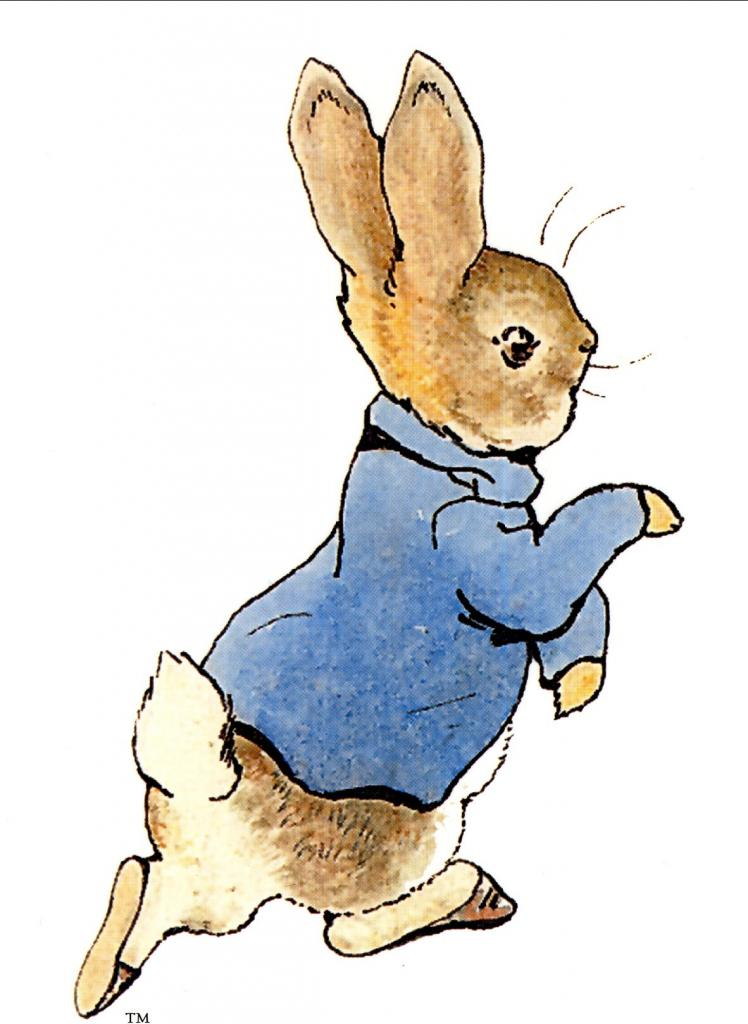 Quand Peter Rabbit Sinvite Chez Baby Gap