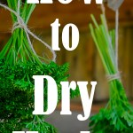Drying herbs is one of the best ways to preserve their flavor & enjoy them longer. Either harvest fresh - at the peak of the season - or grab those herbs from the store. It's time to learn about the four methods for drying herbs! Everything from quick preservation methods - to the easiest way you can make dried herbs at home.